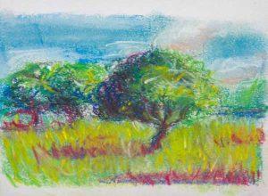 Naučte se malovat - Skici Terezy Mašínové - Pastel
