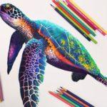 Naučte se malovat - Kreslení pastelkami 3